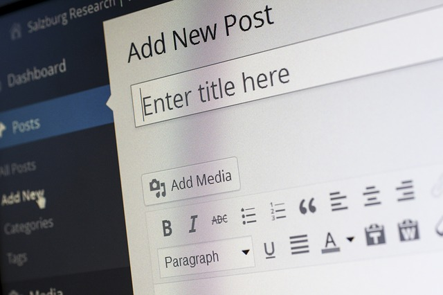 Choose The Best Blogging Platform WordPress