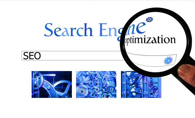 How To Use The SEO Page Rank Tool