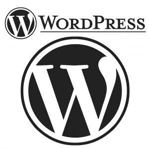 WordPress Has The Speed